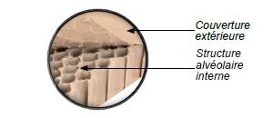 Carton alvéolaire